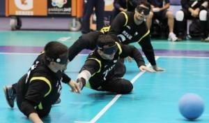 Foto capturada da página eletrônica do Comitê Paralímpico Brasileiro
