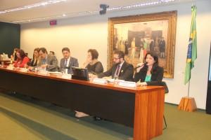 Fernanda Lauria e Lucas Ferreira fizeram parte da mesa na CCJ